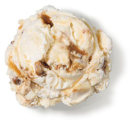 Praline Pecan<br /> Premium Ice Cream