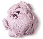 Huckleberry<br /> Premium Ice Cream