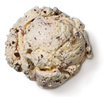 <span>Chocolate Chip Premium Ice Cream</span>