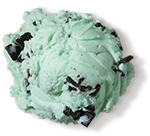 <span>Mint Chocolate Chip Premium Ice Cream</span>