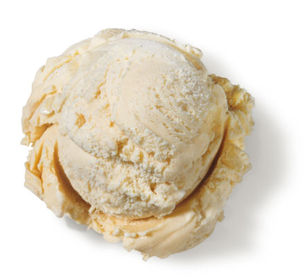 Cinnamon Premium Ice Cream