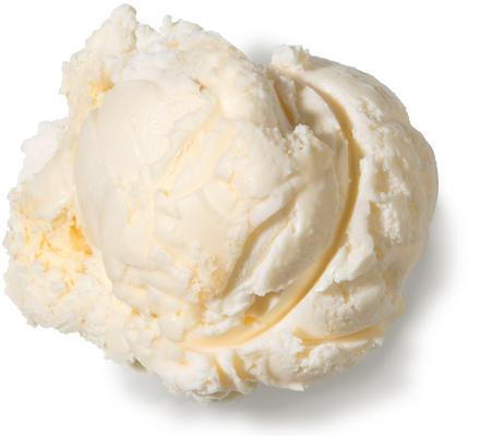 Vanilla No Sugar AddedFat Free Ice Cream