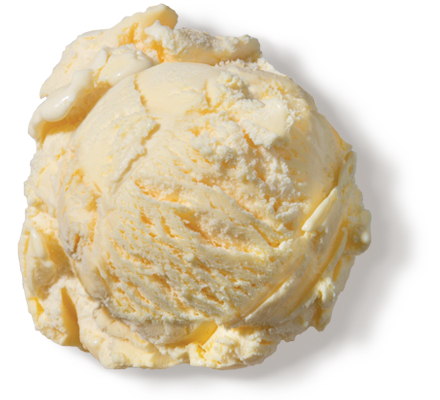 French Vanilla Premium Ice Cream