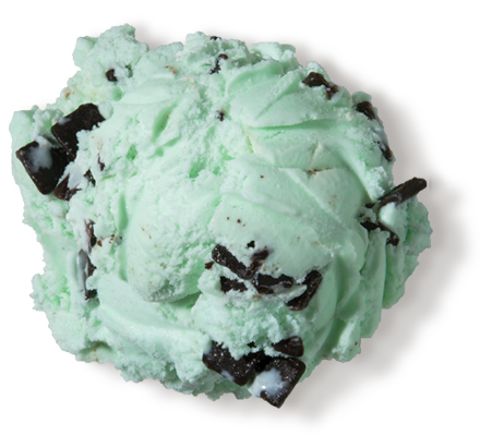 Mint Chocolate Chip Premium Ice Cream