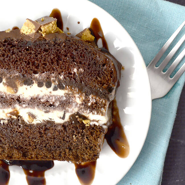 Peanut Butter Party Ice Cream Cake